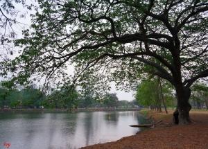 taken at ayutthaya