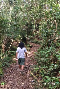 Silau-Silau Trail
